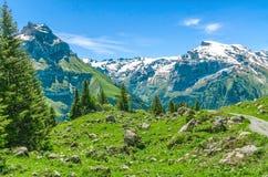 schweiziska alps Semesterort Engelberg Resa på fötter till och med Swisen Fotografering för Bildbyråer