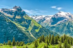 schweiziska alps Semesterort Engelberg Resa på fötter till och med Swisen Arkivbilder