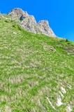 schweiziska alps Semesterort Engelberg Resa på fötter till och med Swisen Royaltyfria Bilder