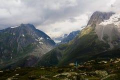 Schweiziska fjällängar Jungfrau-Aletsch Royaltyfri Bild