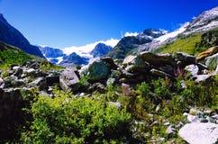 Schweiziska fjällängar nära Matterhorn och Schwarzsee Arkivbild