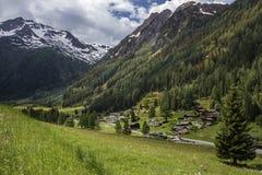 Schweiziska fjällängar - Schweiz Royaltyfri Fotografi