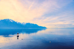 Schweiziska fjällängar som ser över sjöGenève i Montreux, Schweiz Arkivfoto