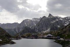 Schweiziska sänkadu tusen dollar St Bernard fjällängar Arkivbilder