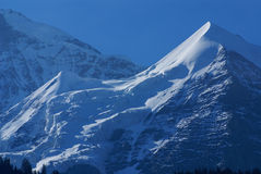 Schweiziskt fjällänglandskap nära Interlaken i Europa. Royaltyfria Foton