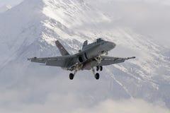 Schweiziskt kämpeflygplan för bålgeting F/A-18 Fotografering för Bildbyråer