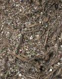 Schwer verunreinigte Umwelt stockbild