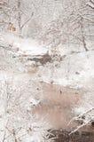 Schwere Schneefälle über einem Nebenfluss Lizenzfreie Stockfotos