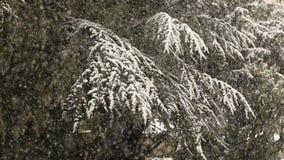 Schwere Schneefälle Stockfoto