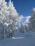 Schwere Schneefälle Stockbilder