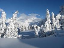 Schwere Schneefälle Lizenzfreie Stockbilder