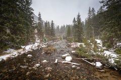 Schwere Schneefälle am Fisch-Nebenfluss in tatra Bergen Stockfotos