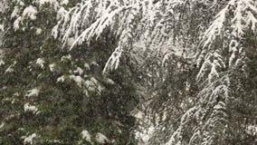 Schwere Schneefälle im Winter stock footage
