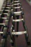 Schwere schwarze Dummköpfe auf Gestell im Gewichtsraum Stockbild