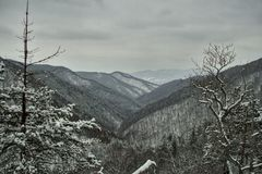Schwere Windenberglandschaft in den Karpaten Stockfotos