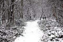 Schwerer Fall des Schnees auf Wandsworth-Common Lizenzfreies Stockfoto