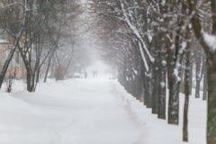 Schwerer Schneesturm, der stark in Zakharova-Straße durchbrennt lizenzfreies stockfoto