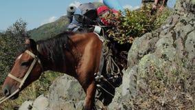 Schweres geladenes Pferd, das über einem Gebirgszug klettert stock video