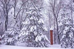 Schweres Schneien im Park lizenzfreie stockbilder