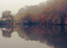 Schwermütiger Herbstteich Stockfotografie