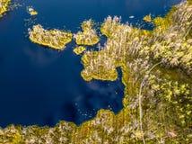 Schwermütiges Brummen-Foto des bunten Heidemoors im Frühsommer-Sonnenaufgang lizenzfreies stockbild