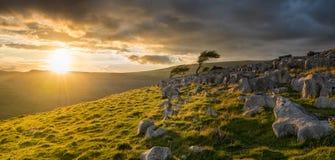 Schwermütiges stürmisches Sonnenaufganglicht auf dem Yorkshire macht fest lizenzfreie stockfotografie