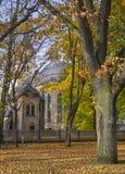 Schwermütiger Herbstpark Lizenzfreie Stockfotografie