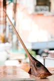 Schwertfische Stockfotos