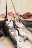Schwertfische in einem Fischmarkt in Sizilien Lizenzfreie Stockfotos