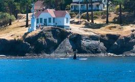 Schwertwal nahe der Küste Stockfotos