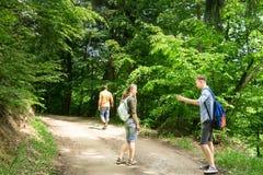 Schwester und Bruder, die mit Elternteil im Sommerwald wandern Stockfoto