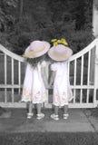 Schwestern, die über Gartentorschauen Lizenzfreies Stockfoto