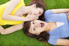 Schwestern, die auf der Wiese und dem überraschten Ausdruck flüstern Stockbilder