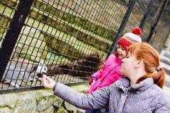 Schwestern im Zoo Lizenzfreie Stockfotografie