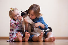 Schwestern mit Katze Stockbild