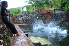 Schwimmen an altem Pool 2016 Stockfotografie