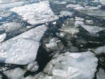 Schwimmen des Eises Stockfotos