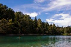 Schwimmen in einem See Lizenzfreie Stockfotos