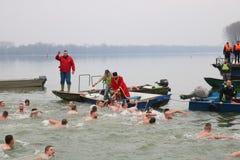 Schwimmen für ein Ehrenkreuz lizenzfreies stockfoto
