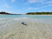 Schwimmen-Flossen Fidschi lizenzfreie stockfotos