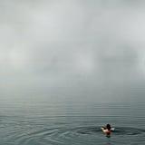 Schwimmen im nebeligen See Stockbild