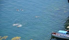 Schwimmen im Ohrid See Lizenzfreies Stockbild