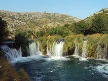 Schwimmen im Wasserfall stockfoto