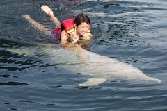 Schwimmen mit Delphin stockfotos