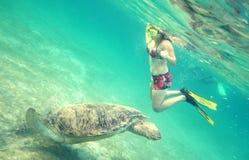Schwimmen mit Schildkröte Stockfoto