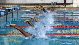 Schwimmen-Treffen Stockbilder