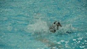 Schwimmenartschleichen-Frauenzeitlupe stock footage