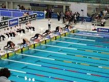 Schwimmenrennanfang Lizenzfreie Stockfotografie