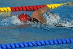 Schwimmenrennen Stockfoto