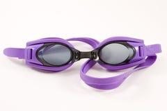 Schwimmenschutzbrillen stockfoto